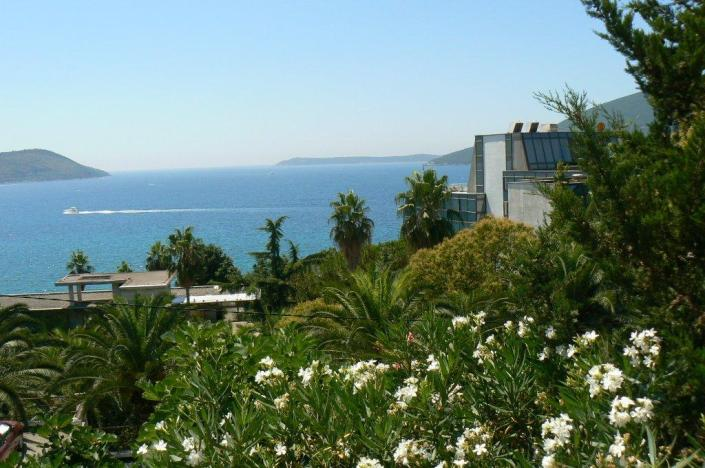 Внж черногория через покупку недвижимости в